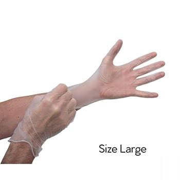 Transparent Gloves - Size L